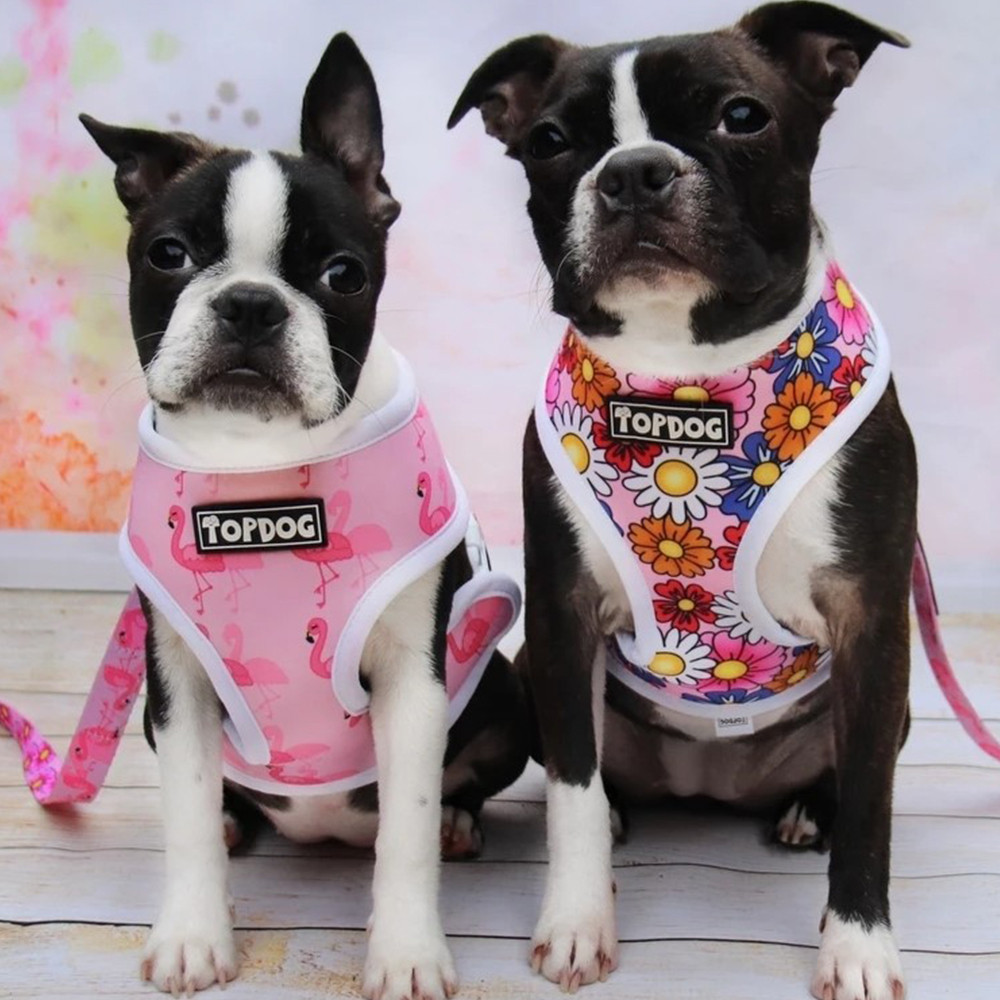 TopDog 'Pretty in Pink' reversible harness